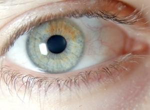 eyecolor1
